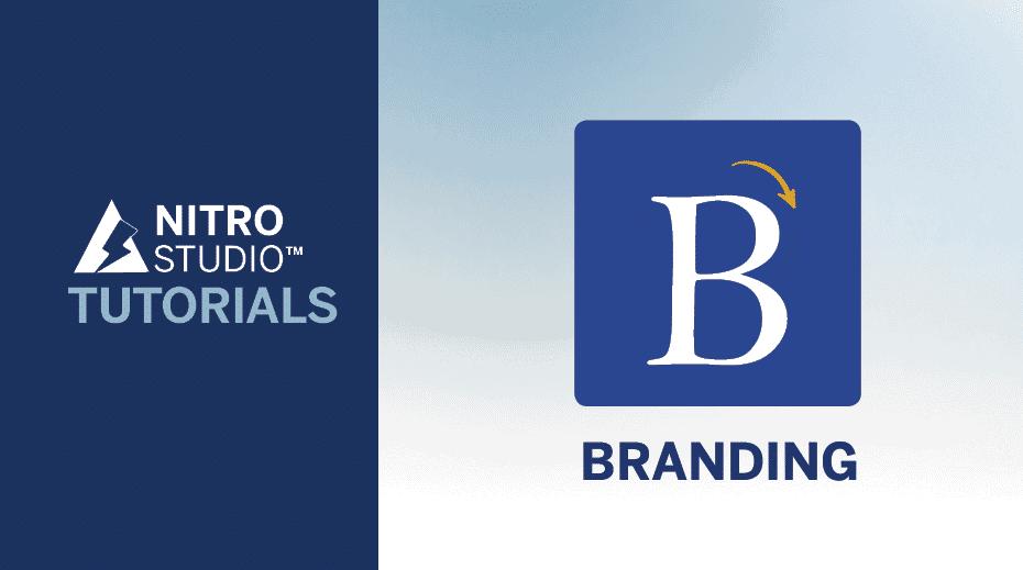 NITRO Studio Tutorial Series: Branding
